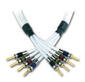 genesis-bi-wire